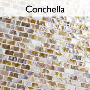 Conchella_Collection