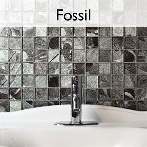 Fossil_Collection