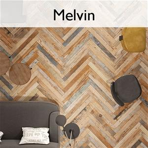 Melvin_Collection