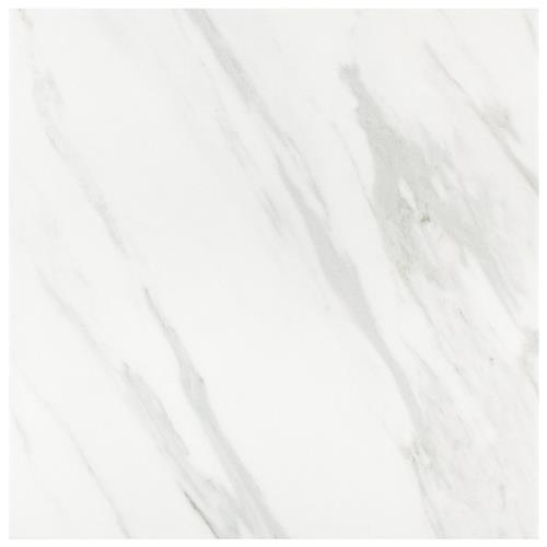 "Picture of Eterno Carrara 9-3/4""x9-3/4"" Porcelain F/W Tile"