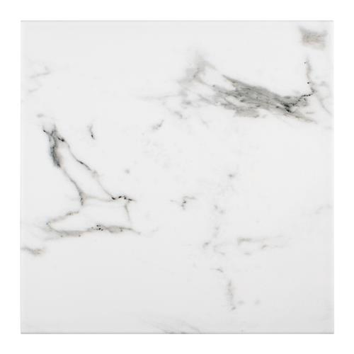 "Picture of Timeless Calacatta Square 9-3/4"" x 9-3/4"" Porcelain F/W Tile"