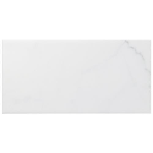 "Picture of Classico Carrara Matte 3""x6"" Ceramic W Tile"